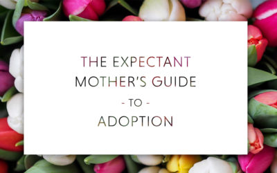 Download The Expectant Mother's Guide to Adoption
