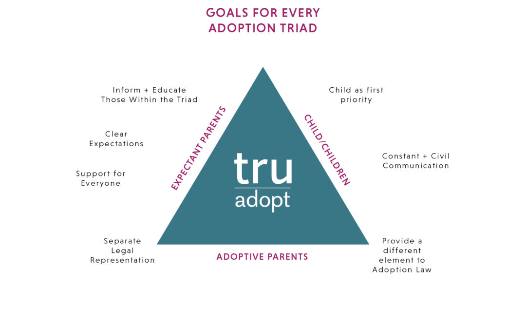 The TruAdopt Adoption Triad